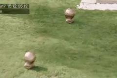 """Con trai Ronaldo lấy 2 Quả bóng Vàng để """"luyện công"""""""