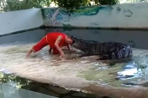 Chui đầu vào miệng cá sấu và cái kết bất ngờ