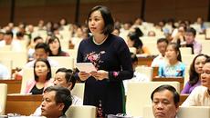 Tuần này, QH biểu quyết về sân bay Long Thành