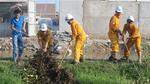 PV GAS hưởng ứng Tháng hành động vì môi trường