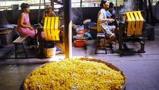 Khai mạc Festival Văn hóa Tơ lụa, thổ cẩm Việt Nam-Châu Á