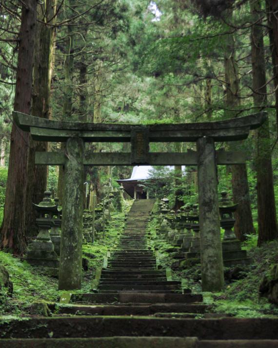 7 bí quyết sống khoẻ, sống lâu của người Nhật được cả thế giới săn lùng