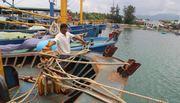 Bình Định công bố kết luận vụ tàu gần 20 tỷ rỉ sét