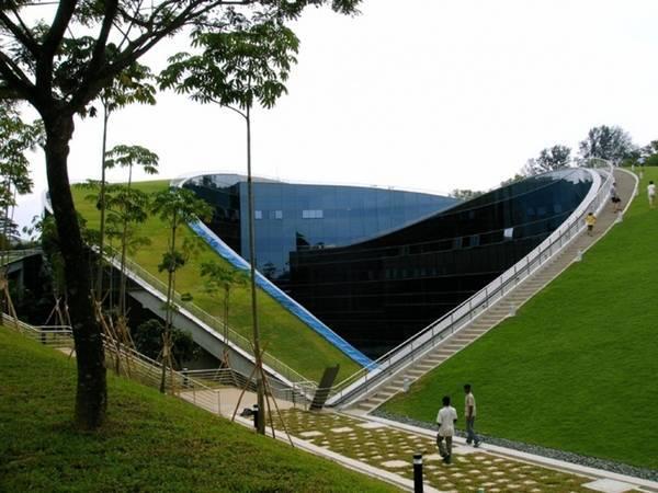 vườn cây trên mái, kiến trúc xanh, thiết kế nhà