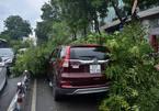 Sau cơn mưa chiều, cửa ngõ sân bay Tân Sơn Nhất tê liệt nhiều giờ