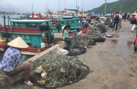 Đảo Nam Du,Ngư dân,Hải sản,Người nghèo