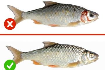 Tuyệt chiêu kiểm tra thực phẩm sạch bằng mắt thường