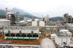 Thua lỗ, Vinachem xin khoanh nợ vay 250 triệu USD từ Trung Quốc
