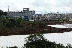 Bụi alumin bám đầy cây trồng của dân