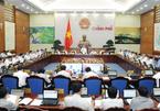 15 ngày nữa công bố về hải sản tầng đáy 4 tỉnh miền Trung