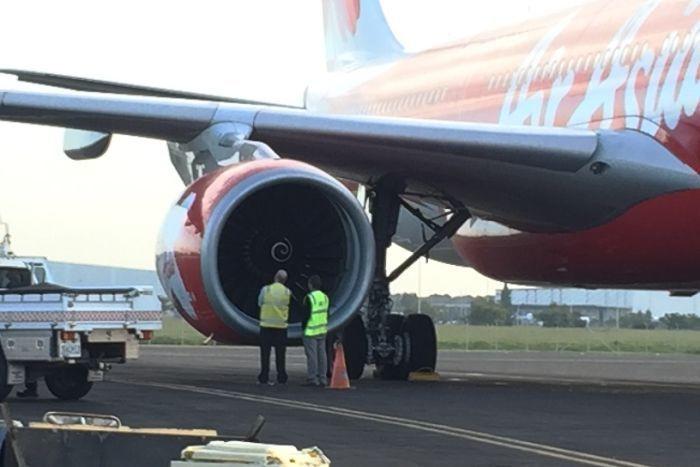 Máy bay hạ cánh khẩn cấp vì bị chim tấn công