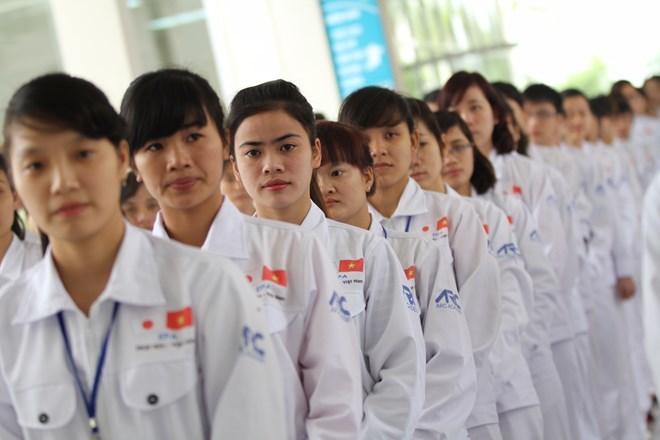 thất nghiệp,cử nhân,thạc sĩ,xuất khẩu lao động,bộ lao động thương binh xã hội,bộ giáo dục,đề án