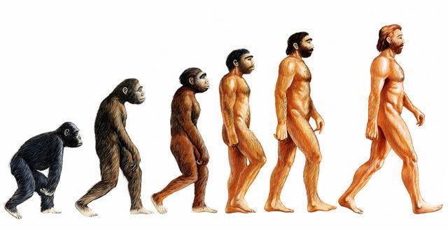 thuyết tiến hóa,Charles Darwin,giáo dục Thổ Nhĩ Kỳ