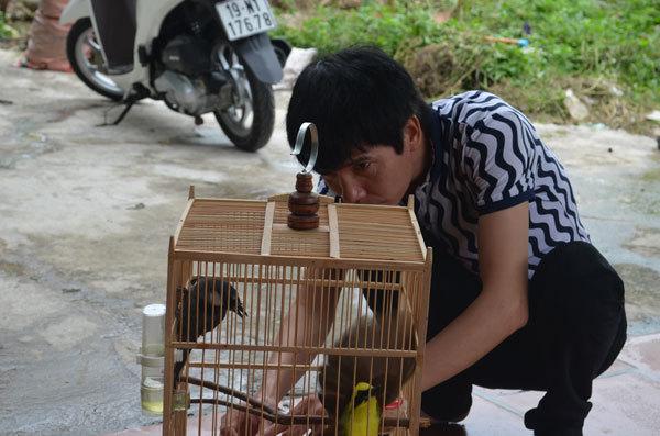 Căn nhà ngoại ô sống toàn với đàn ông của ca sĩ Hồ Quang 8