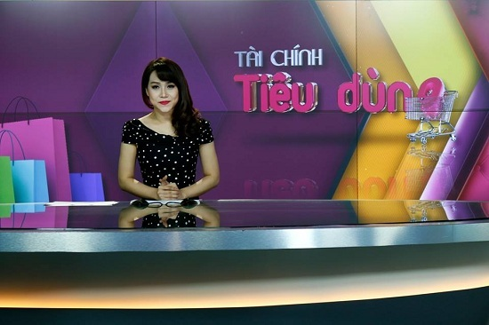 BTV Trúc Mai, MC VTV, Đài truyền hình Việt Nam