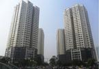 Ban đại diện lâm thời có được quản lý quỹ bảo trì chung cư?