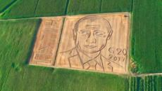 Dùng máy kéo vẽ chân dung Putin trên đồng ngô