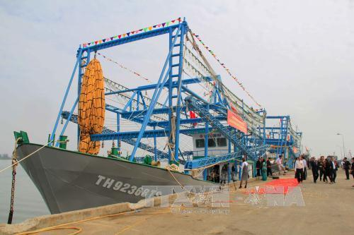 Thanh Hóa báo cáo: 18/23 tàu vỏ thép bị hư hỏng