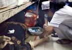 Cấp cứu bệnh nhân trên sàn nhà, điều dưỡng bị kỷ luật