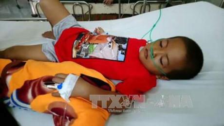Bị bạch tuộc cắn, bé trai 6 tuổi suýt mất mạng