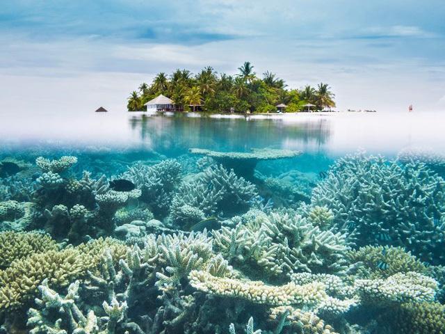 Hòn đảo đẹp nhất thế giới,  top bãi biển đẹp nhất Châu Á