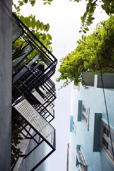 Nhà ngập nắng ở Hà Nội đẹp lạ lùng trên báo ngoại