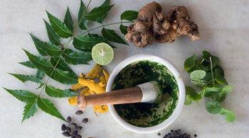 Các bài thuốc tự nhiên chữa bệnh chàm eczema hiệu quả