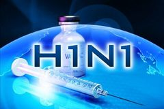 Cách xử lý ổ dịch cúm A H1N1 lây từ lợn sang người