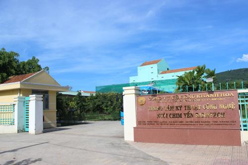 Yến sào Khánh Hòa: khai thác đi liền với bảo tồn