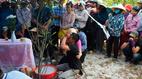 Bé trai mất tích ở Quảng Bình: Bố ngã quỵ bên linh cữu con