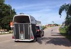 Đại gia Quảng Ninh dùng Lexus LX570 kéo xe chở ngựa quý