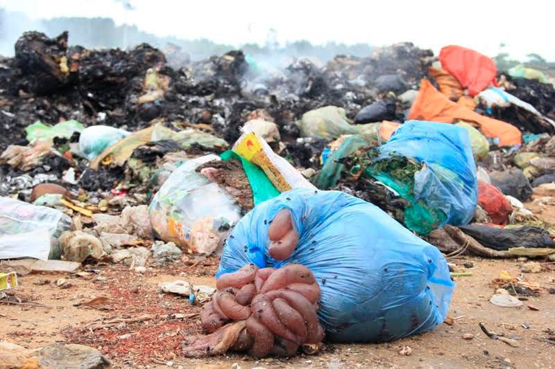 ô nhiễm môi trường,Hà Tĩnh