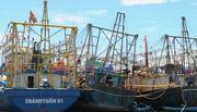 Vụ tàu vỏ thép nằm bờ: Buộc sửa chữa 20 tàu