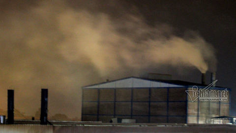 Cây cối chết vì khói bụi, người dân cầu cứu