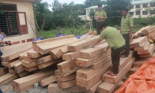 phá rừng, lâm tặc, rừng pư mu, Quảng Nam, đồn biên phòng