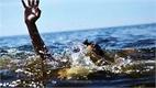 Quảng Bình: Đi tắm biển, hai em nhỏ chết đuối thương tâm