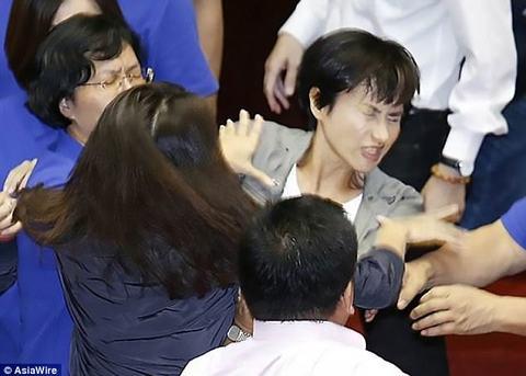 Bà nghị Đài Loan choảng nhau giữa nghị trường