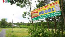 Đất quanh Sân bay Long Thành tăng chóng mặt