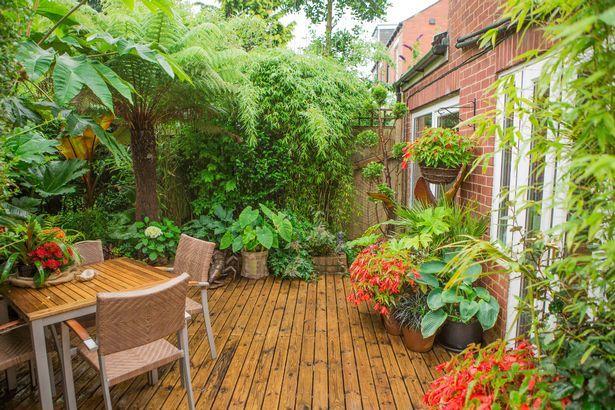 vườn nhà, nhà đẹp
