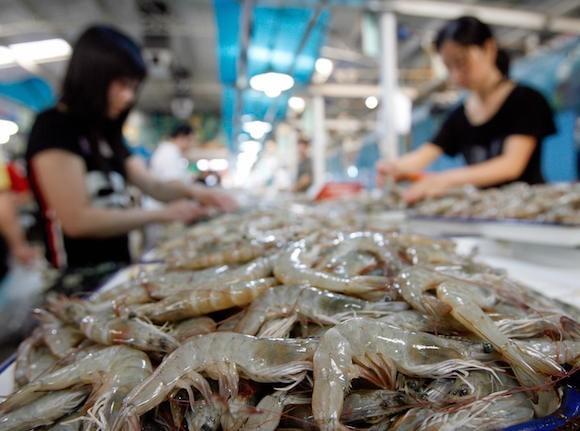 thực phẩm bẩn, Trung Quốc, tôm bơm tạp chất, thịt bẩn, sữa giả