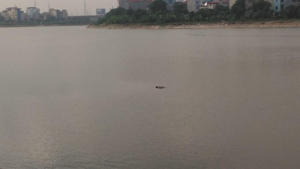 Hà Nội: Phát hiện thi thể bốc mùi nổi giữa hồ Linh Đàm