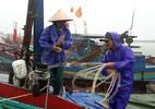 Bão số 2 giật cấp 11 đổ bộ Thanh Hóa - Hà Tĩnh