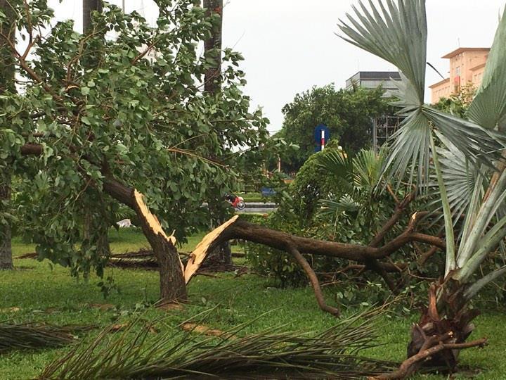 dự báo thời tiết, tin bão, tin bão mới nhất, áp thấp nhiệt đới, bão số 2, cơn bão số 2