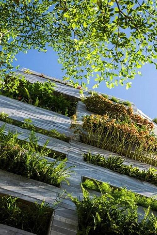 Ngắm loạt nhà Việt rợp cây xanh ấn tượng trên báo Tây