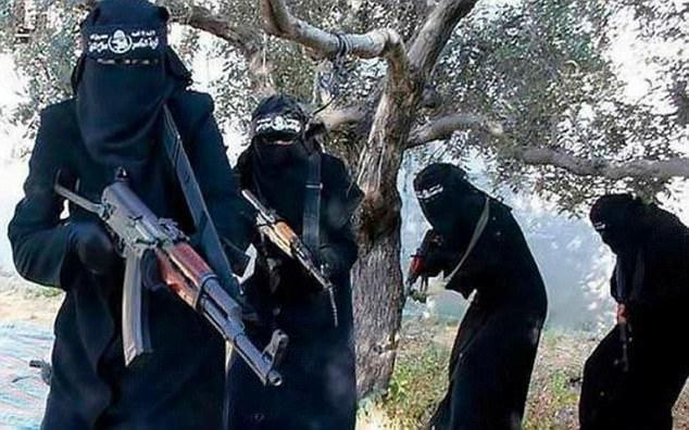 cô dâu IS, Nhà nước Hồi giáo, IS