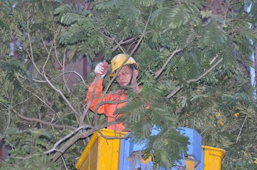 EVN khôi phục việc cung cấp điện sau cơn bão số 2