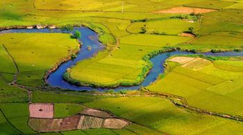 Đi ngay kẻo lỡ mùa lúa chín đẹp lung linh ở Bắc Sơn