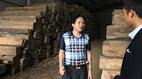 Chính phủ giao Bộ NN-PTNT trả lời kiến nghị 'giải cứu' gỗ Hà Tĩnh