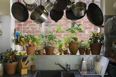 Những mẹo tiết kiệm tiền từ trong bếp nhà bạn