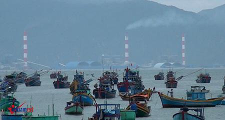 Tiến sĩ bị mạo danh nói về dự án đổ 1 triệu m3 bùn thải xuống biển